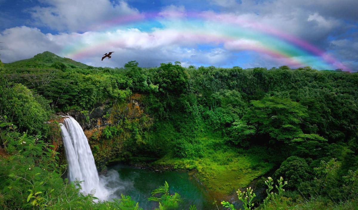 Ho'oponopono, la meditazione hawaiana