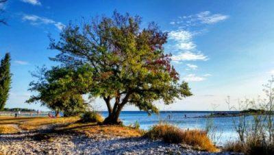 Istria Tour 2016: la Croazia più vicina…ad un passo da casa!